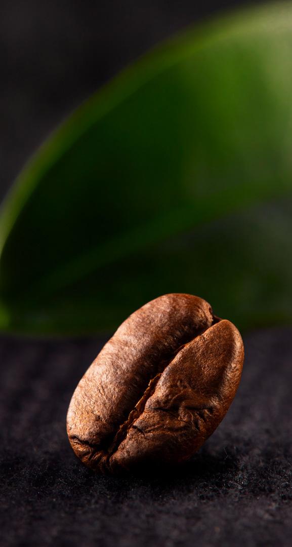 Floris Holtland - packaging photography - coffee - falling bean