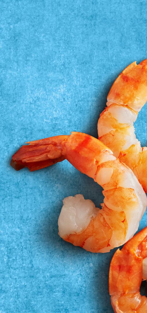 Floris Holtland - packaging photography - spreads - shrimps